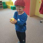 rozeznání ovoce podle hmatu